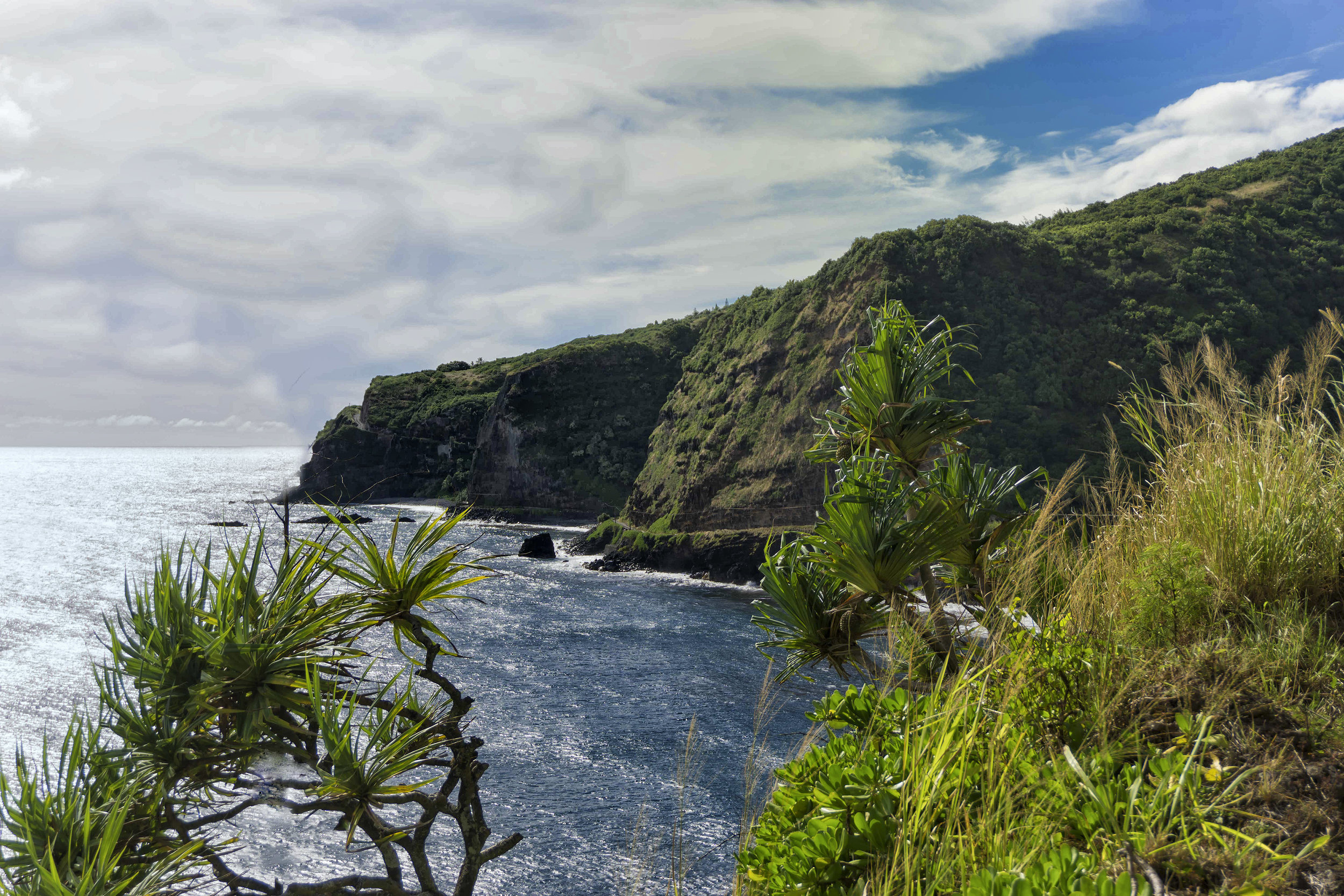 Maui Coast-4 -sized DSC03557.jpg