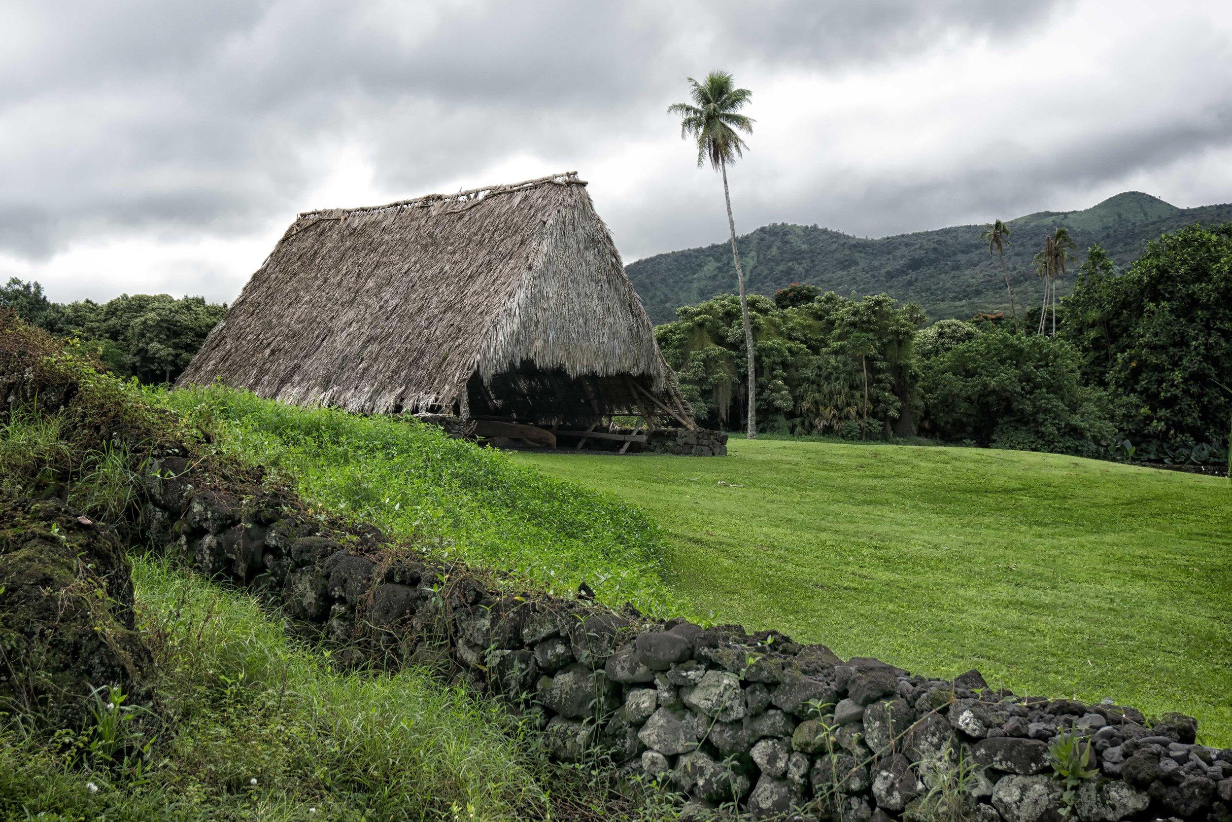 Straw-hut-Maui-4-DSC03522.jpg