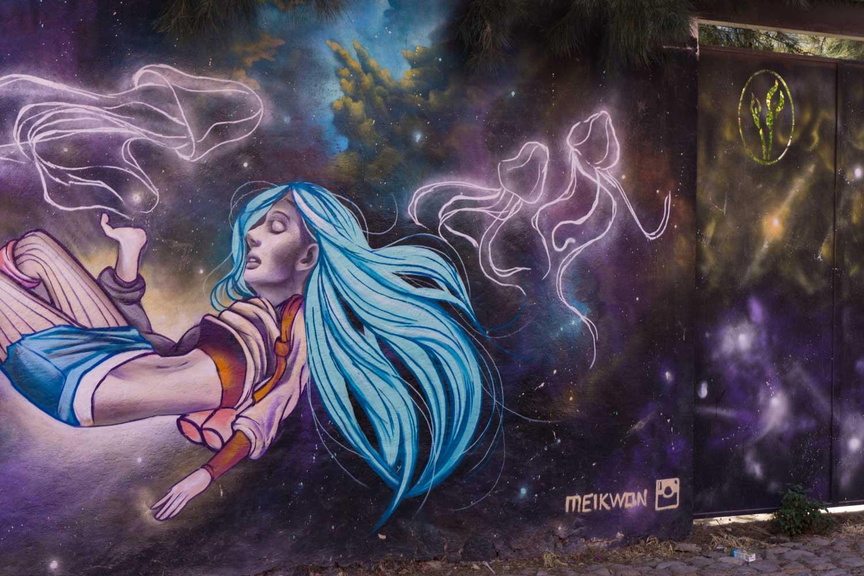 Meik Won artist.jpg