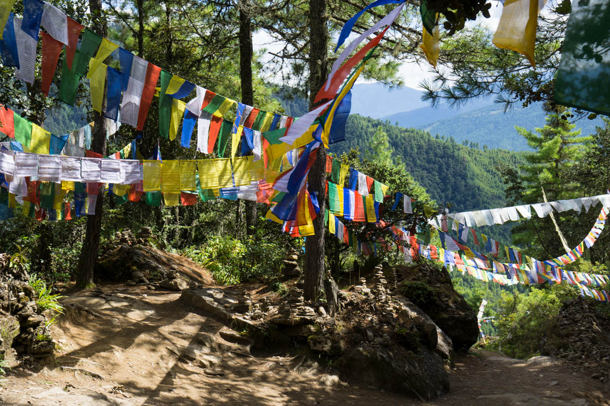 Prayer flags on hike to tigers nest