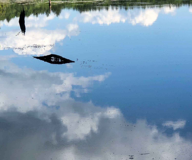 Long-Pond-blog-IMG_3085.jpg