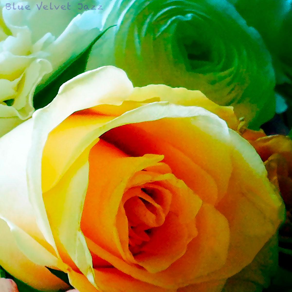 Blue Velvet Jazz Flowers 3