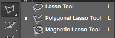 Shoutout to the polygonal lasso tool