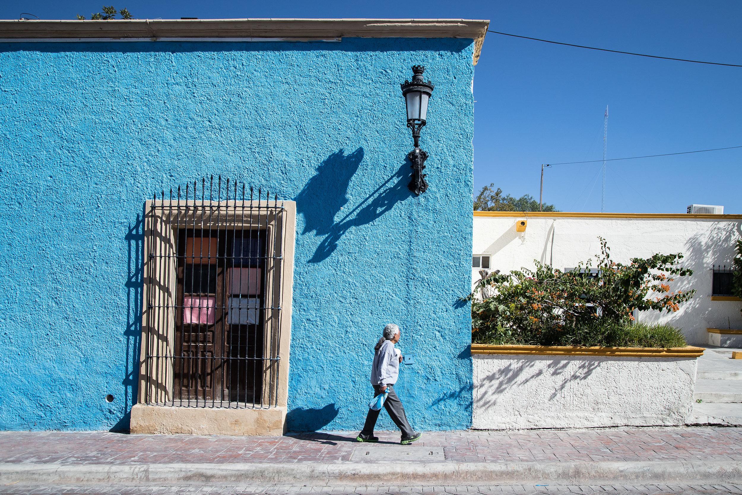 Seen in Parras de la Fuente.