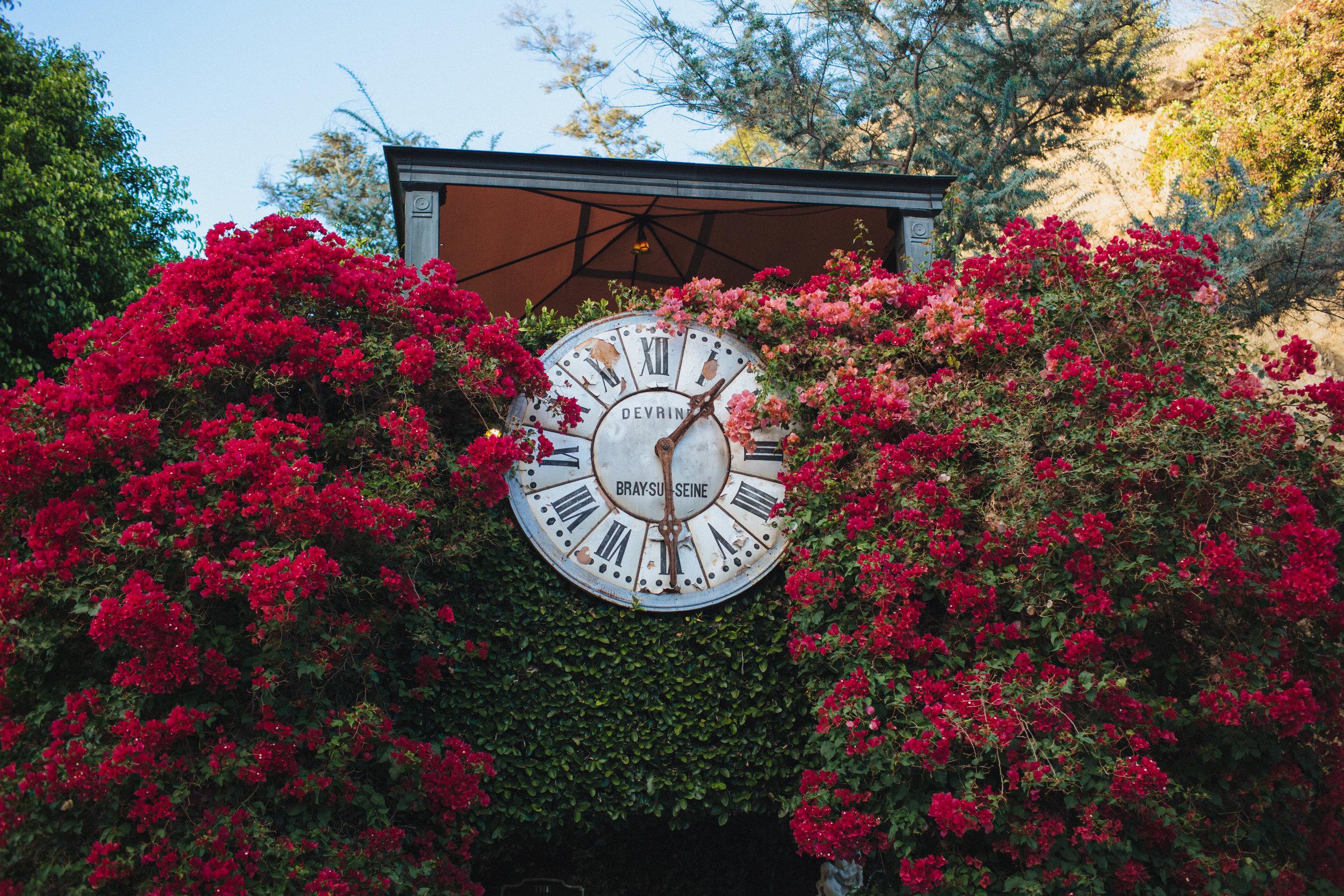 Bougainvillea Clock Bush at The Houdini Estate in Los Angeles, Art & Soul Events, Rad + In Love