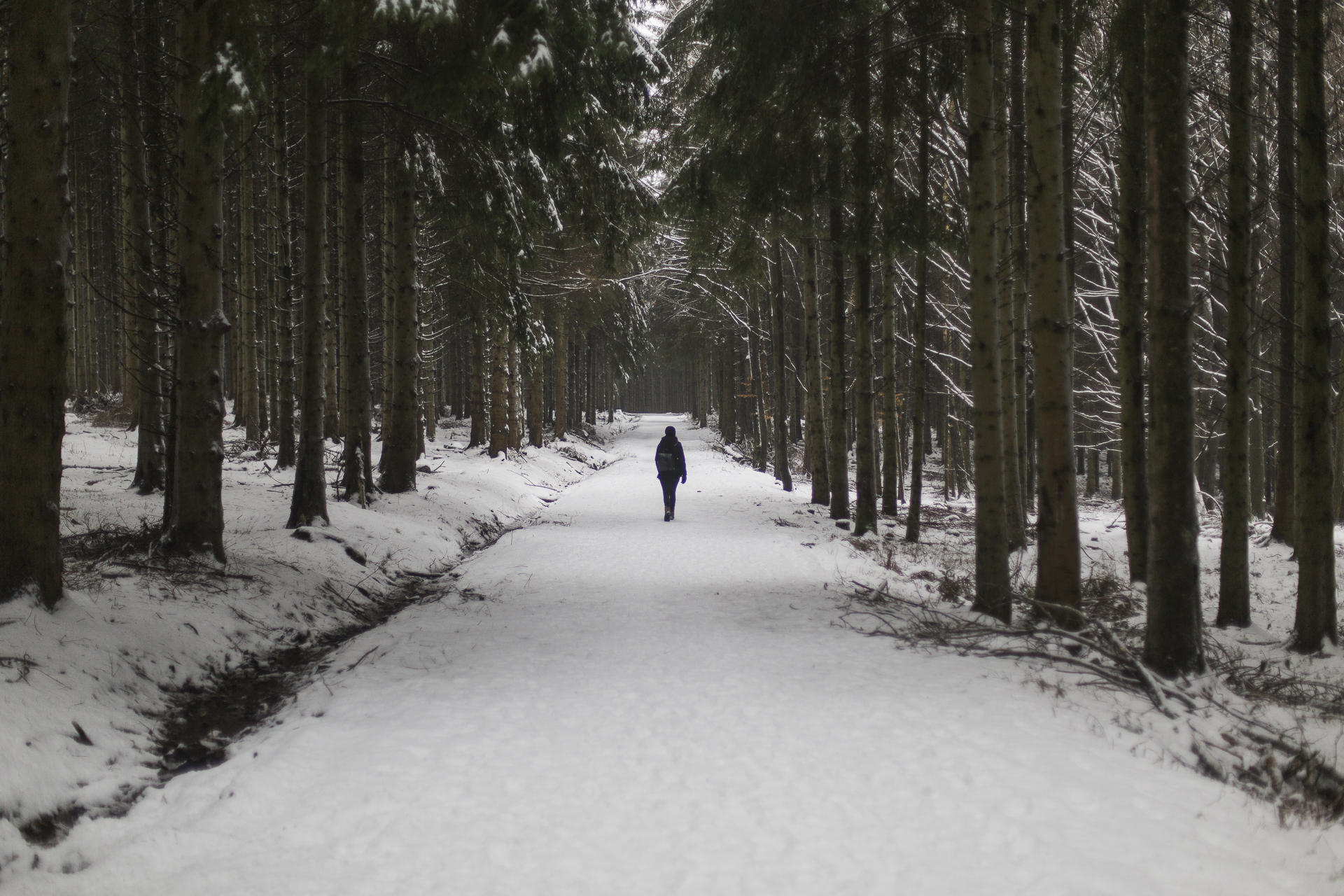 winter_29.jpg