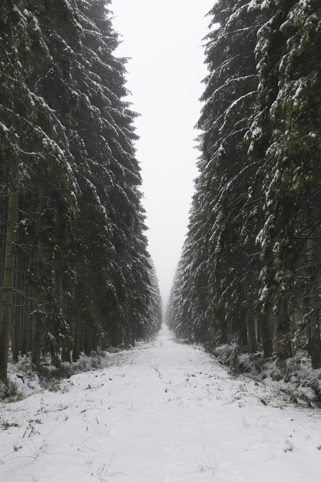 winter_25.jpg