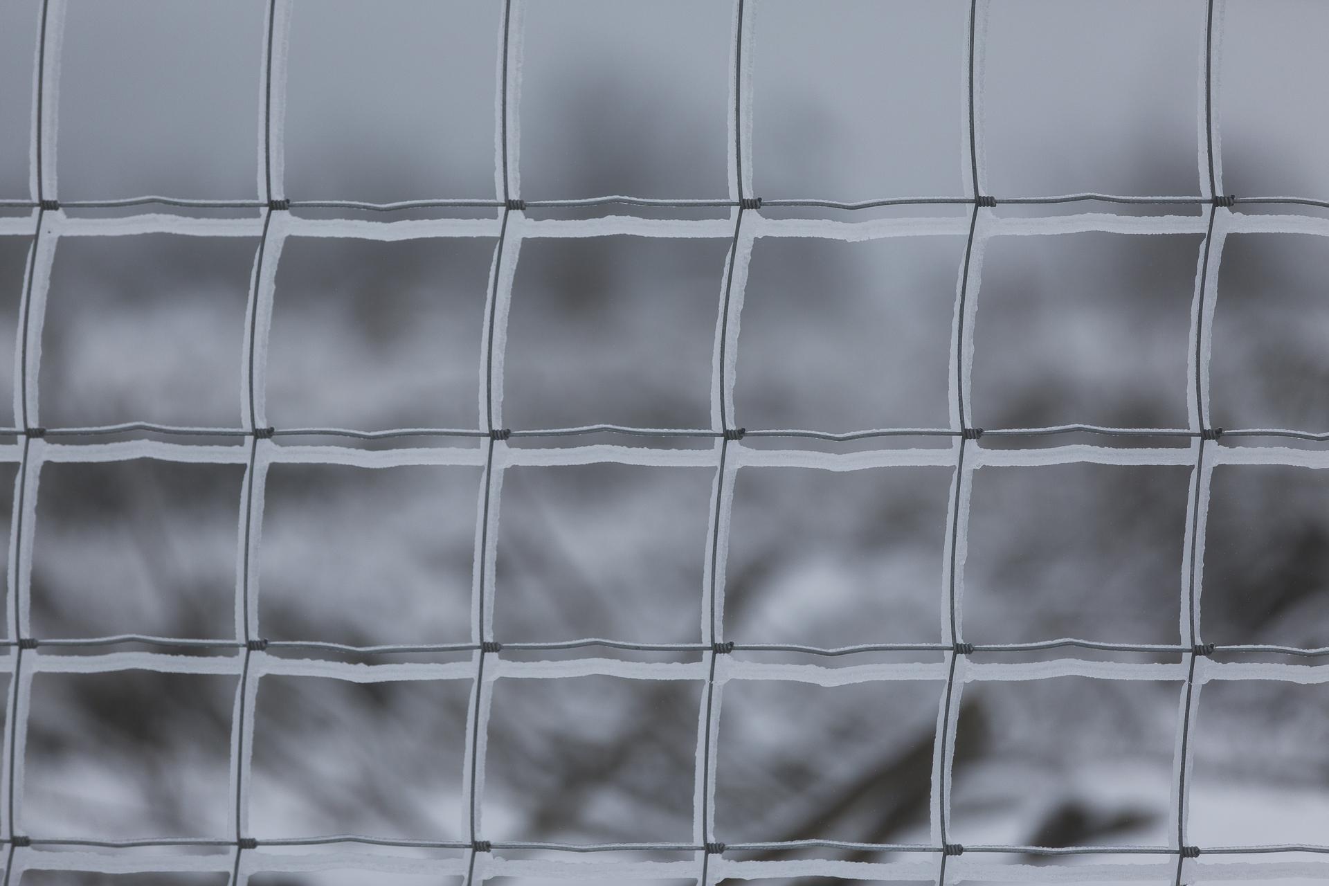winter_55.jpg