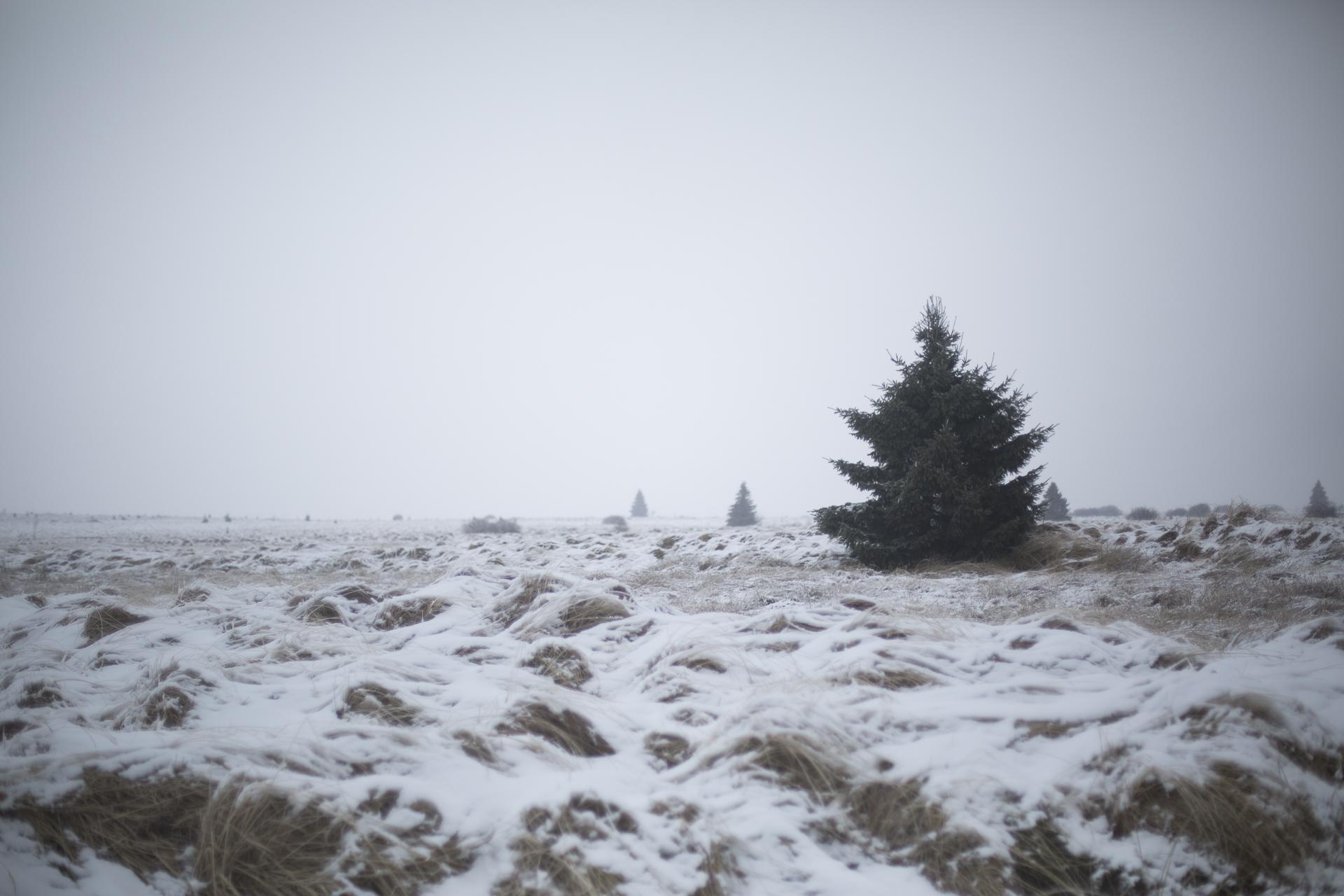 winter_42.jpg
