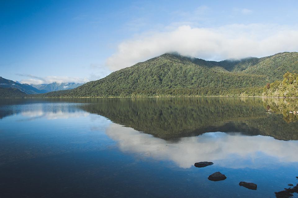 NZ_47.jpg