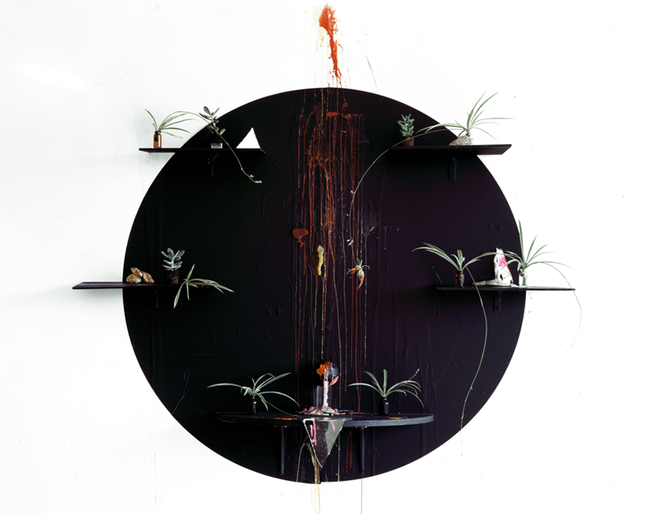 Channeling (Baby Spider Plants), Archival Pigment Print, 40 x 50 inches, 2010