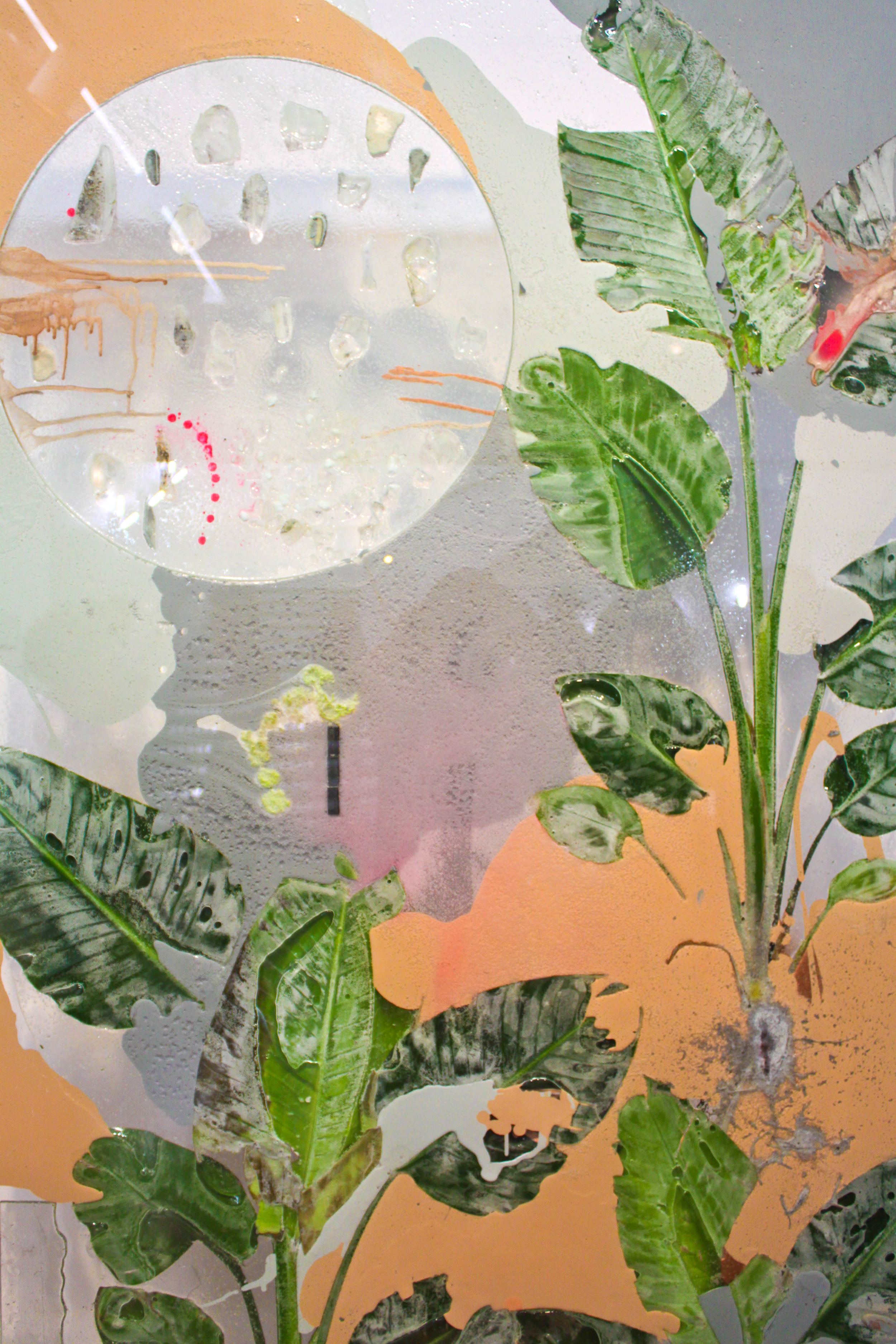 Pressed Plant (Anaphase), 2012, Philodendron selloum, latex paint, spray paint, glass, resin, mirror, 92 x 45 inches