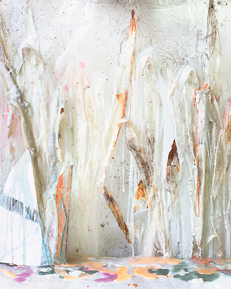 Snake Plant Skins in Wax and Resin, 2012, Archival Pigment Print, 63 1/2 x 51 1/2 inches, Edition of 5 + 2APs