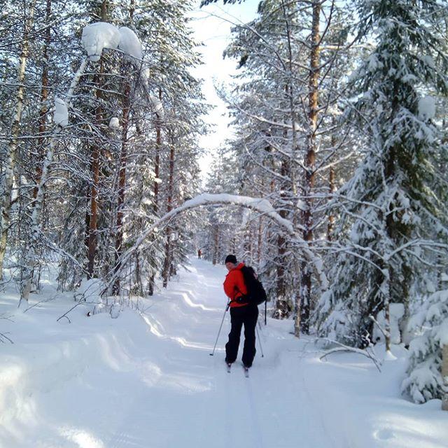 #crosscountry #skiing in the #wilderness  area of #martinselkonen in #finland. Beautiful #skiingtrack just for our little #private group. #visitfinland #winterwonderland #winter #snow #outdoors #nature #upitrek #youradventureofthelifetimebeginstoday #adventure #adventureapes