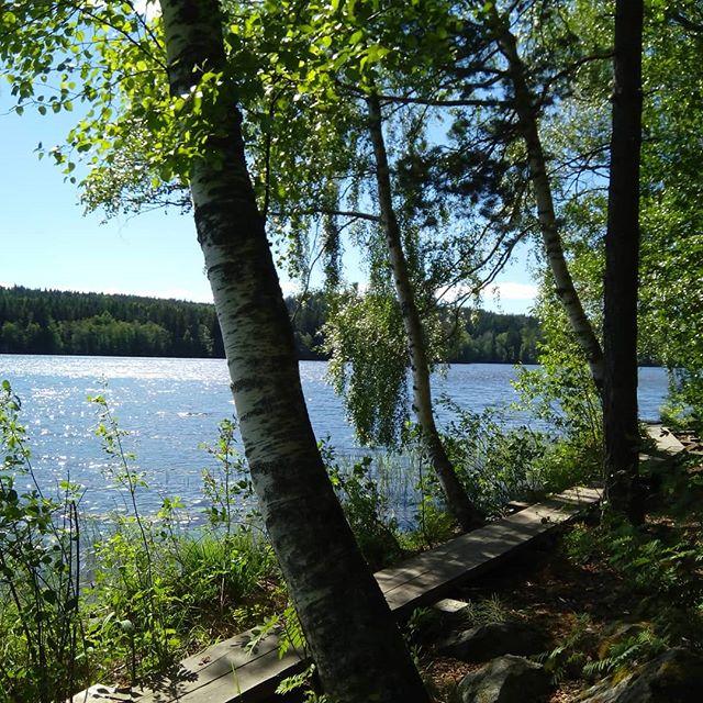 #nordicwalking in #aulanko #hämeenlinna #finland with #australian #customers #visitfinland #visithämeenlinna #outdoors #outdoorslife #summer #lake #landscape_lovers #guidedtour #adventureapes #youradventureofthelifetimebeginstoday