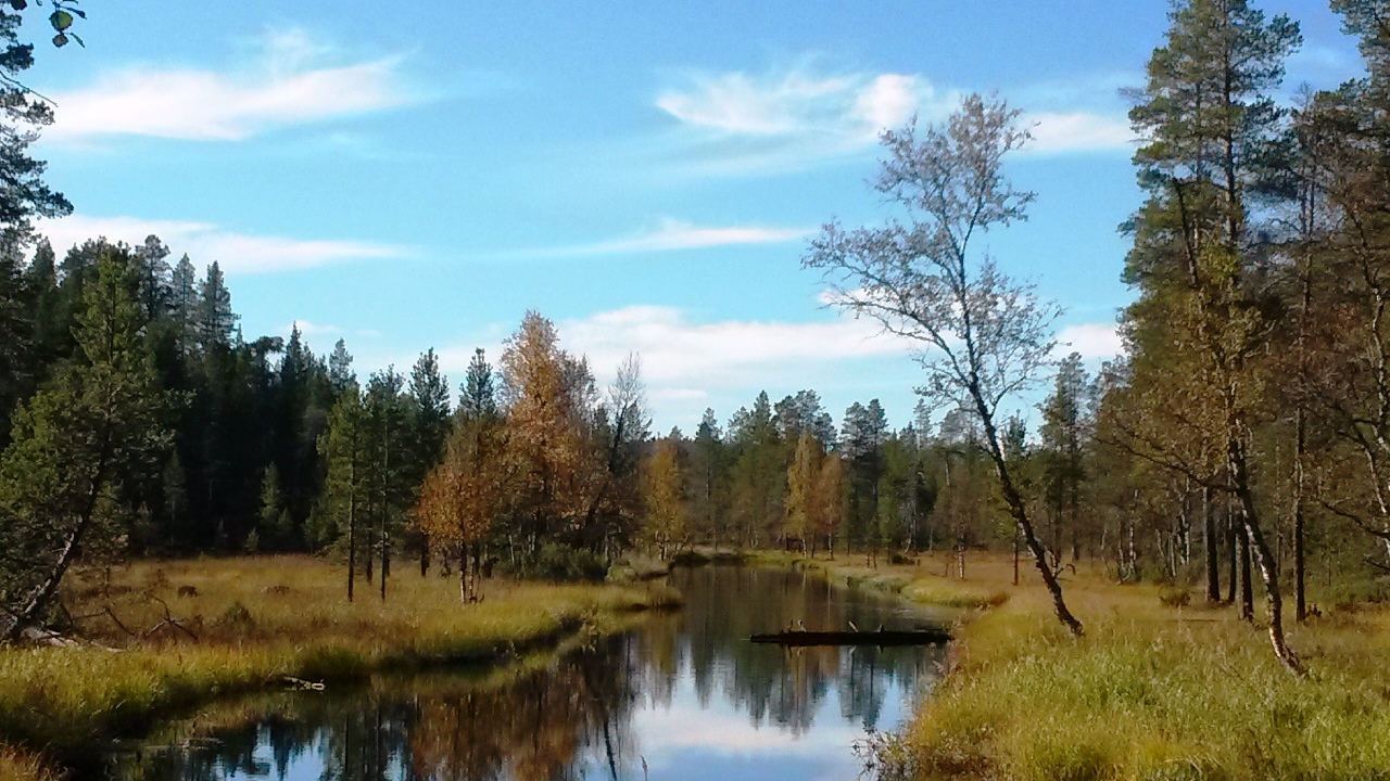 hiking in Urho Kekkonen National Park.jpg