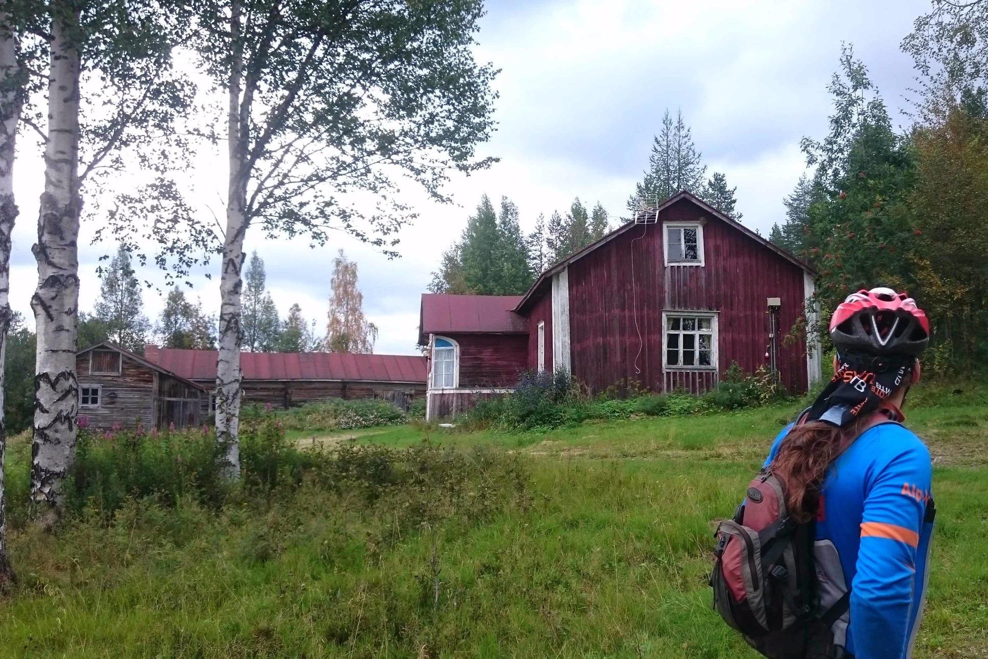 Ahola+cabins.jpg