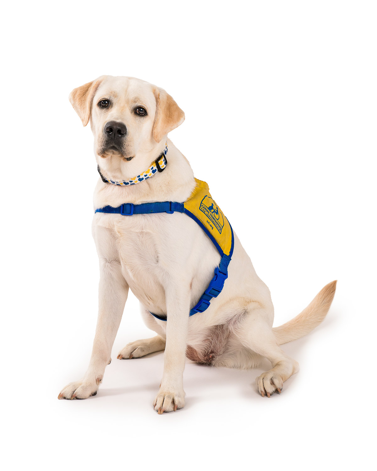 CCI Canine Companions for Independence - 006.jpg