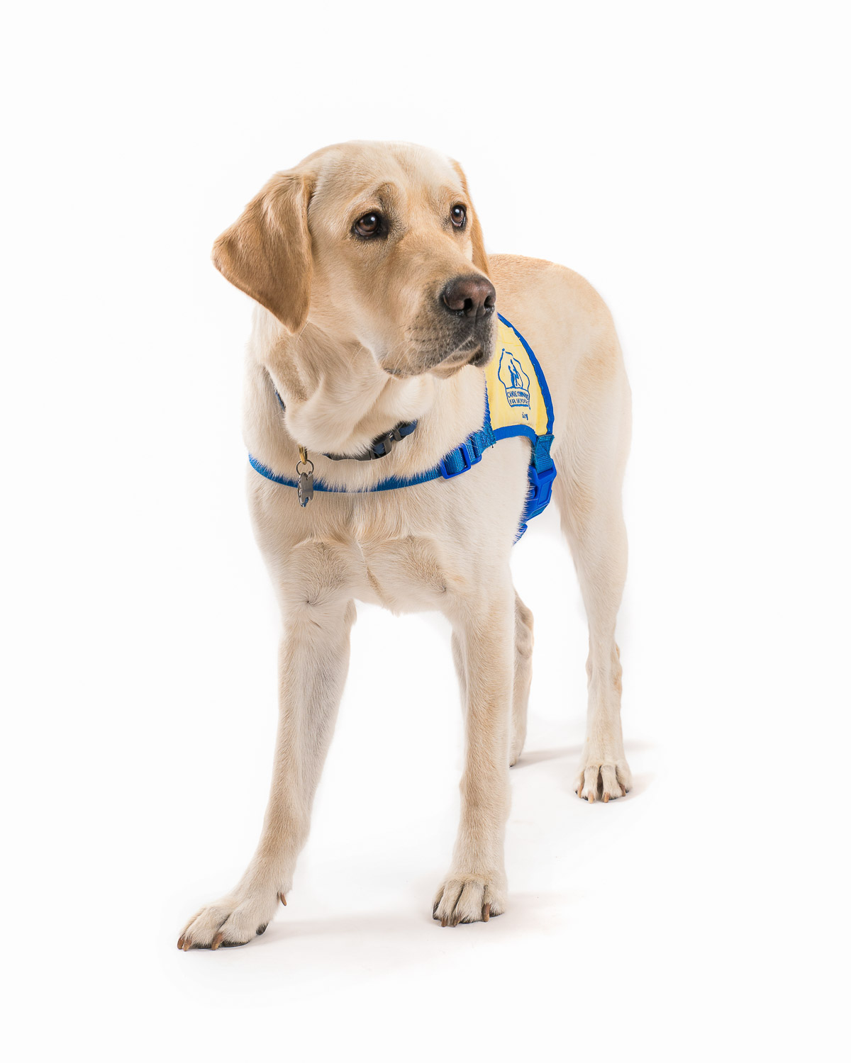 CCI Canine Companions for Independence - 009.jpg