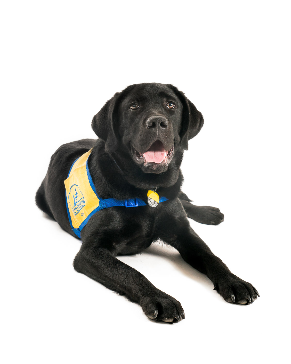 CCI Canine Companions for Independence - 013.jpg