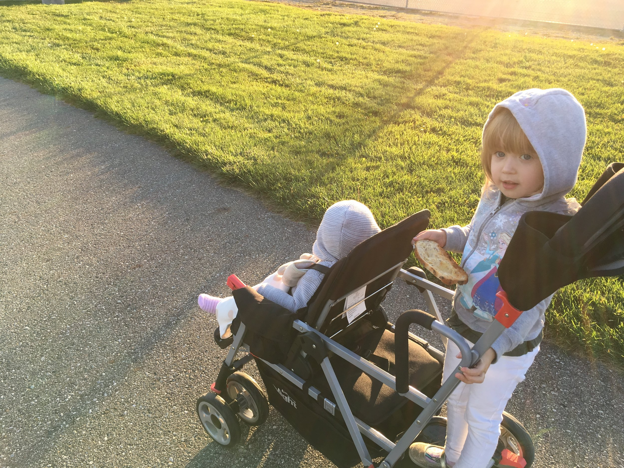 The girls on the stroller at the park (Troy, MI)