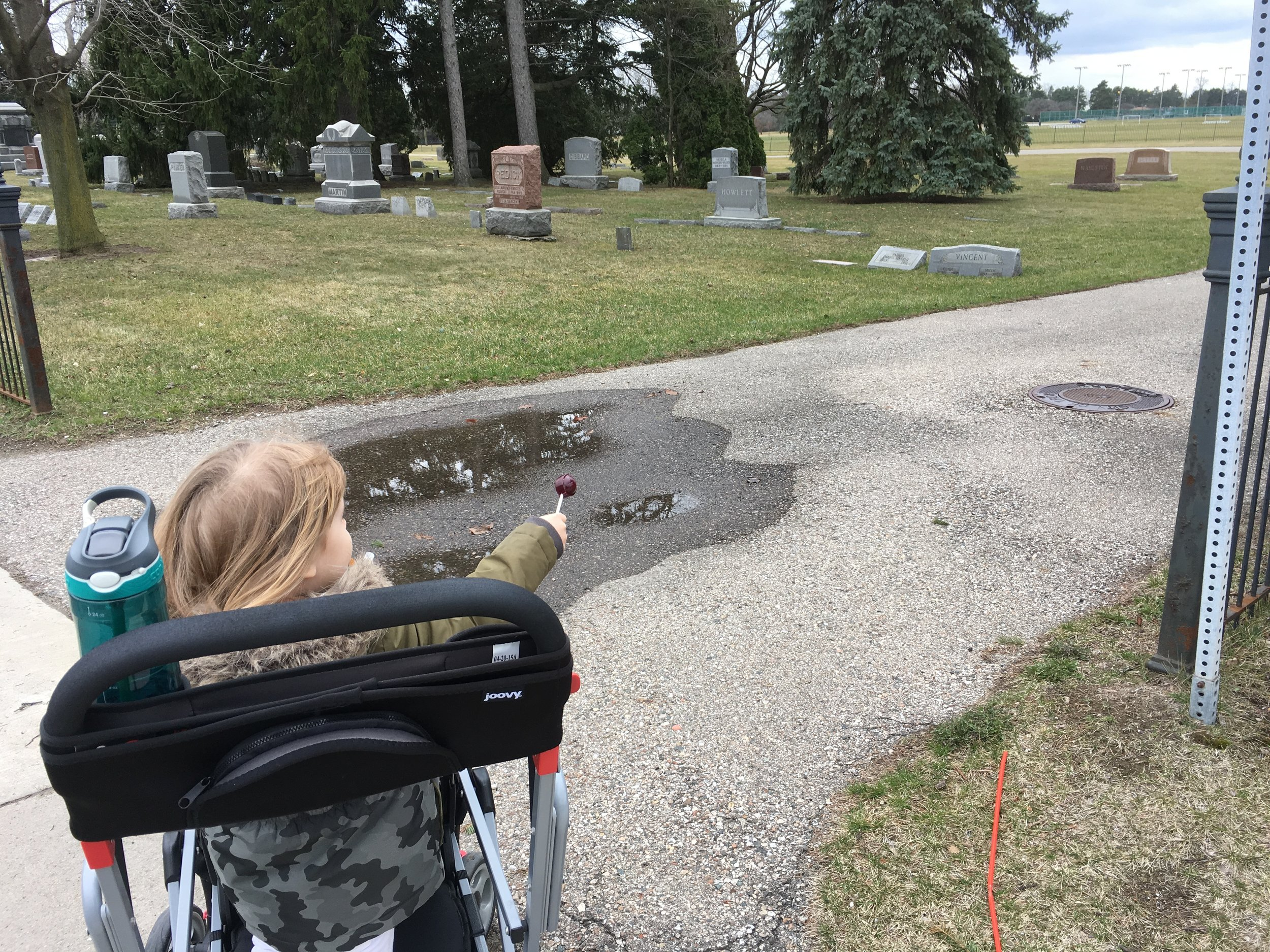 An unexpected walk through cemetery