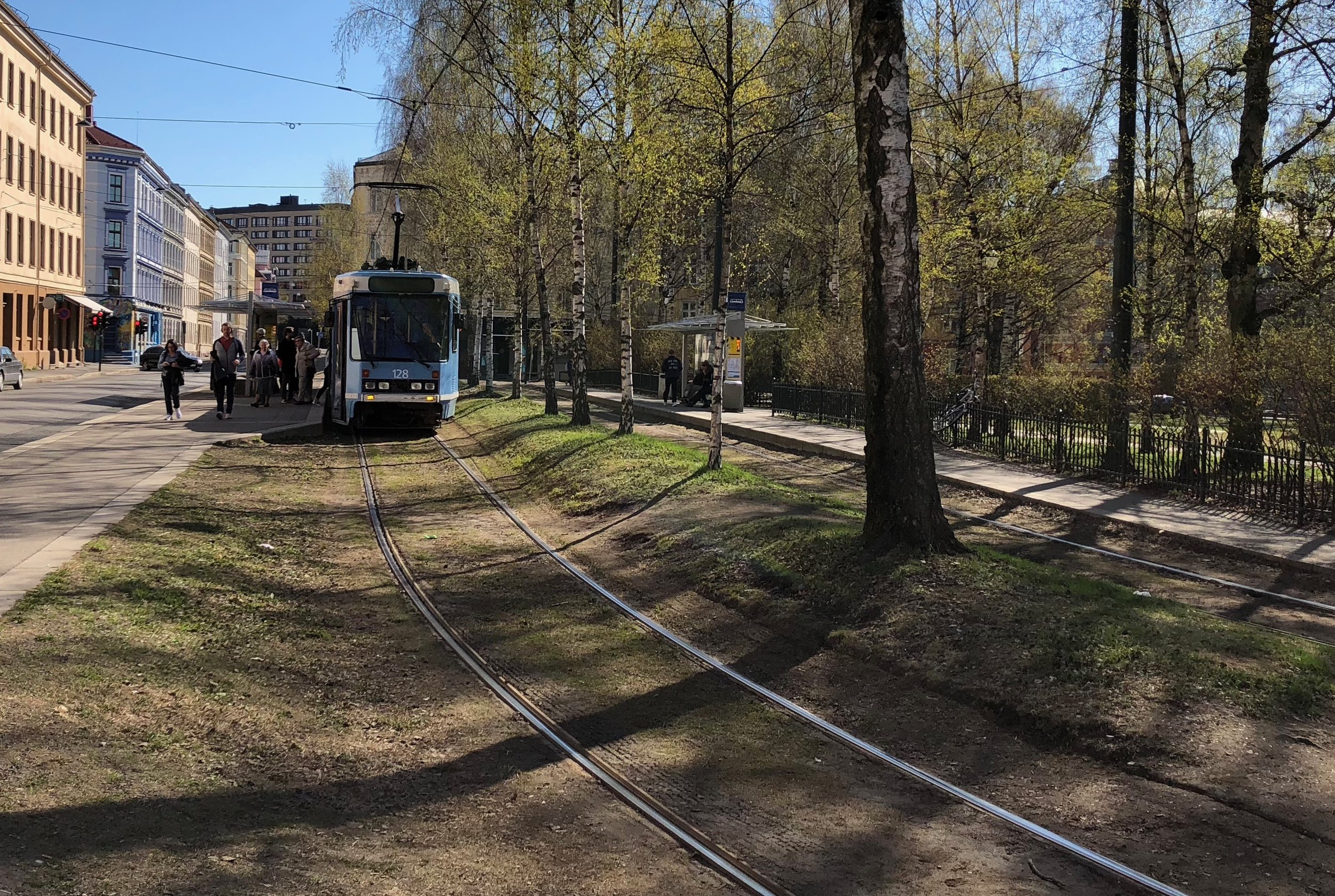 Trams in Oslo, Norway, thread gracefully around local parks.