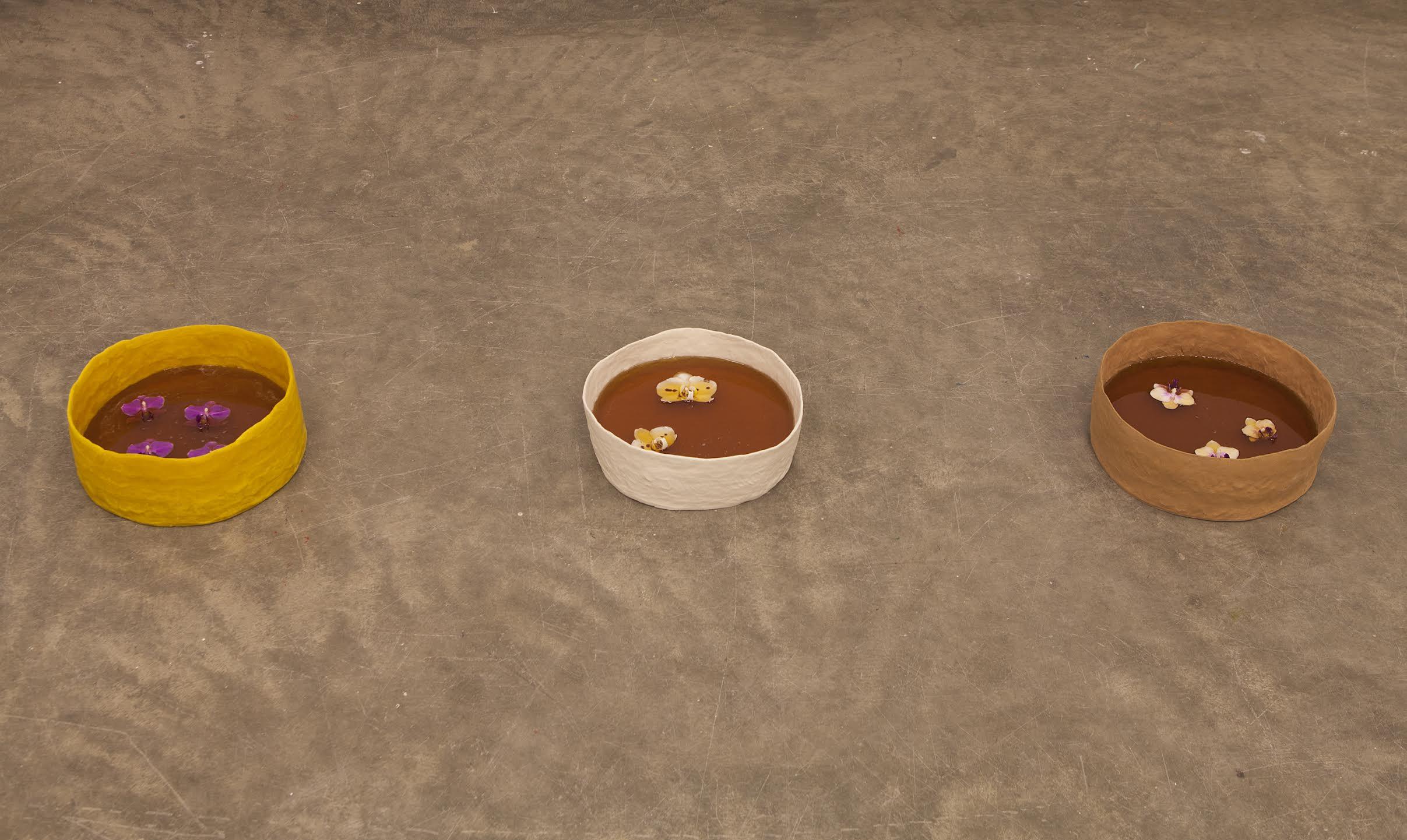 Honey Basins