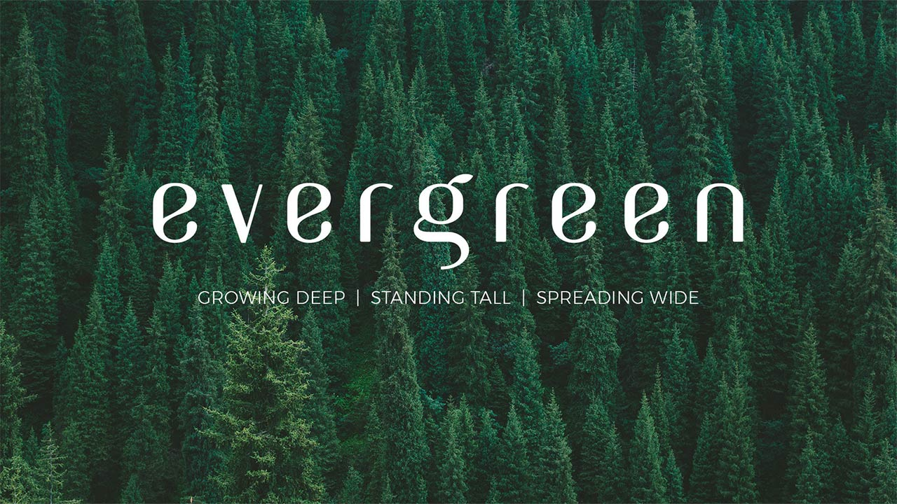 evergreen_BC.jpg