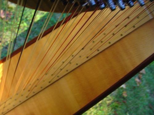 Triple-strung harps