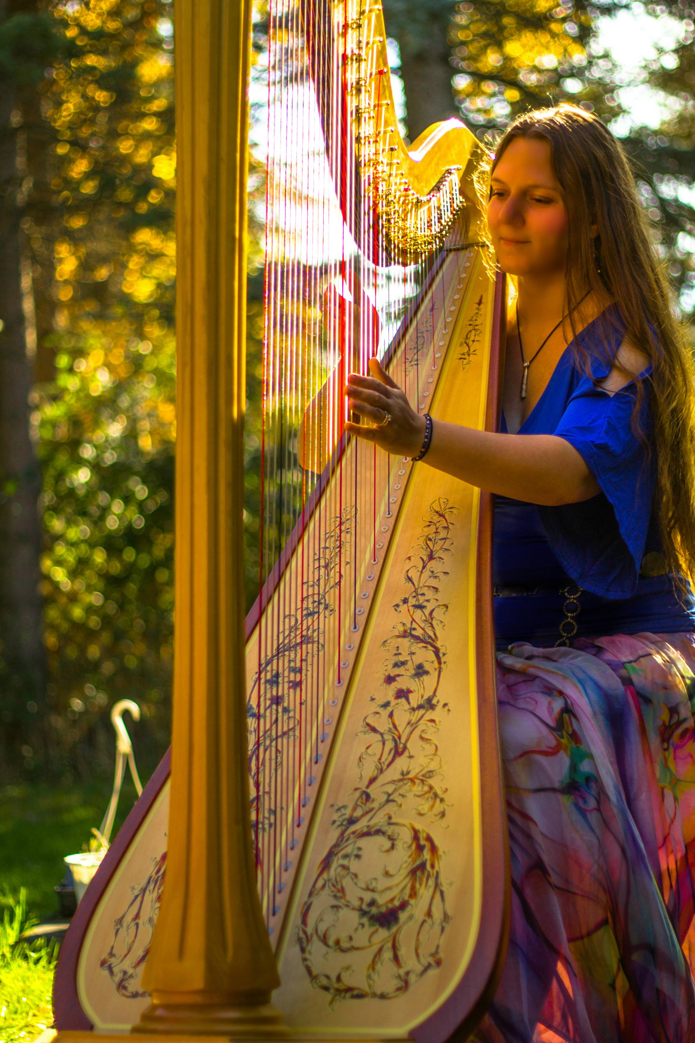 Michigan Harpist