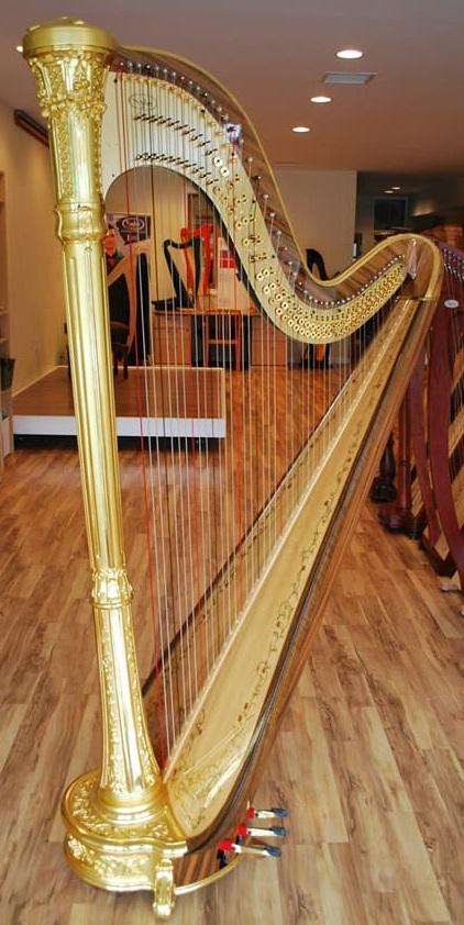The Michigan Harpist (7).jpg
