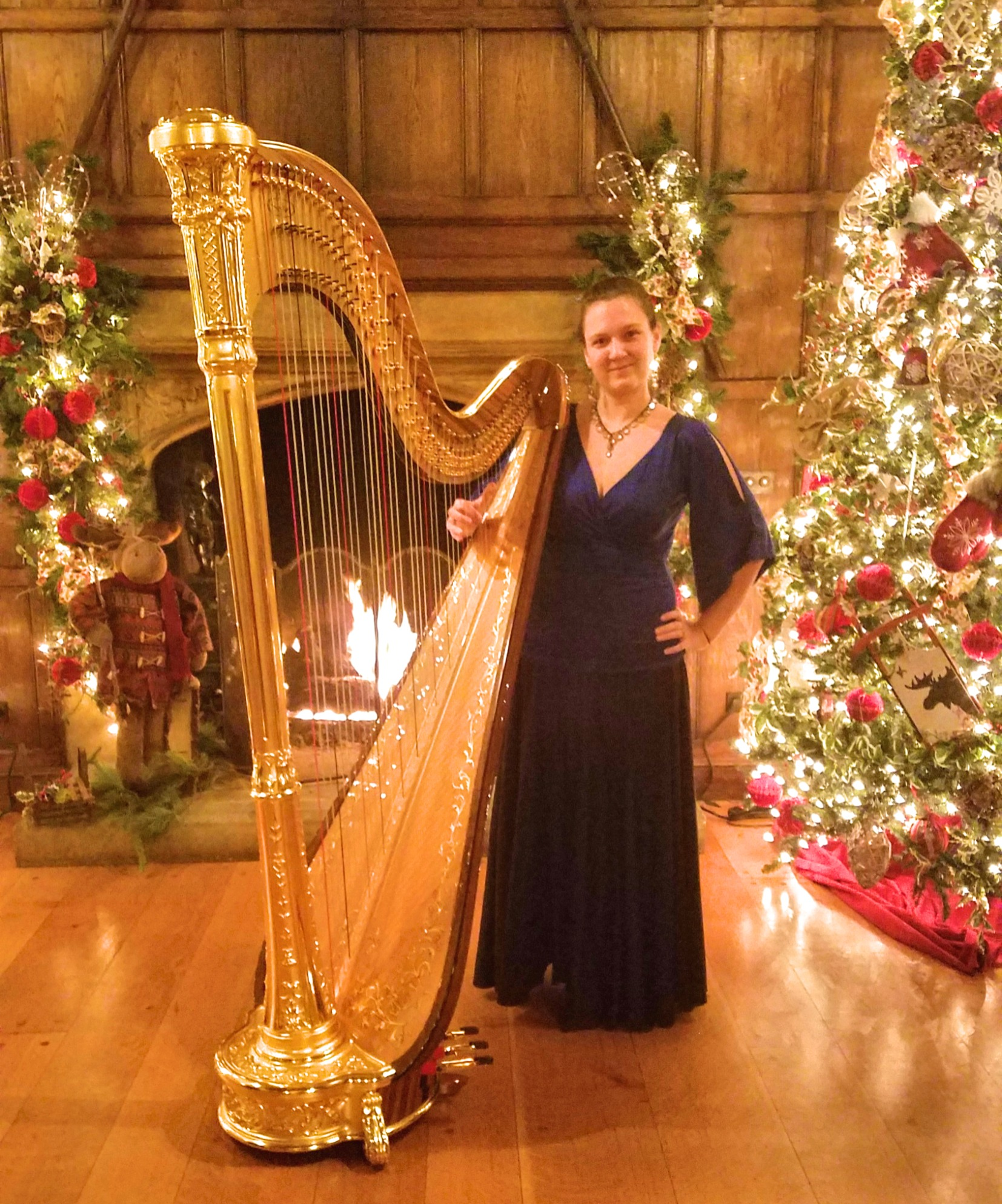 Harpist with Fireplace.jpg