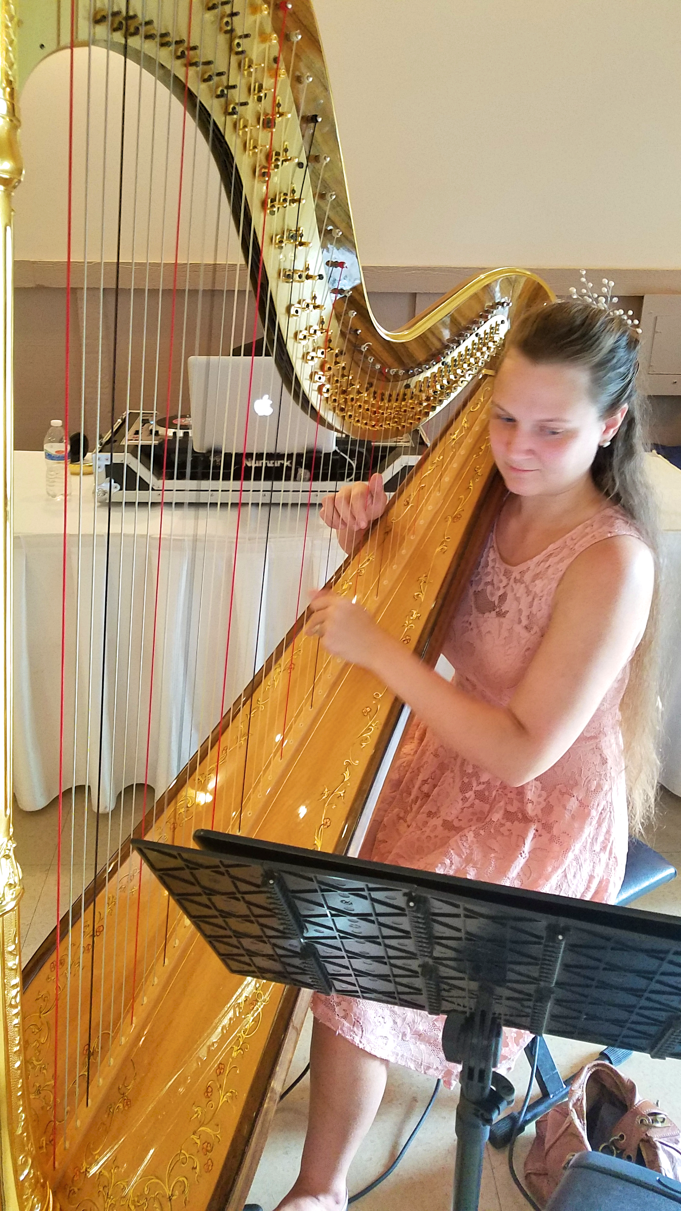 The Michigan Harpist Weddings and Events