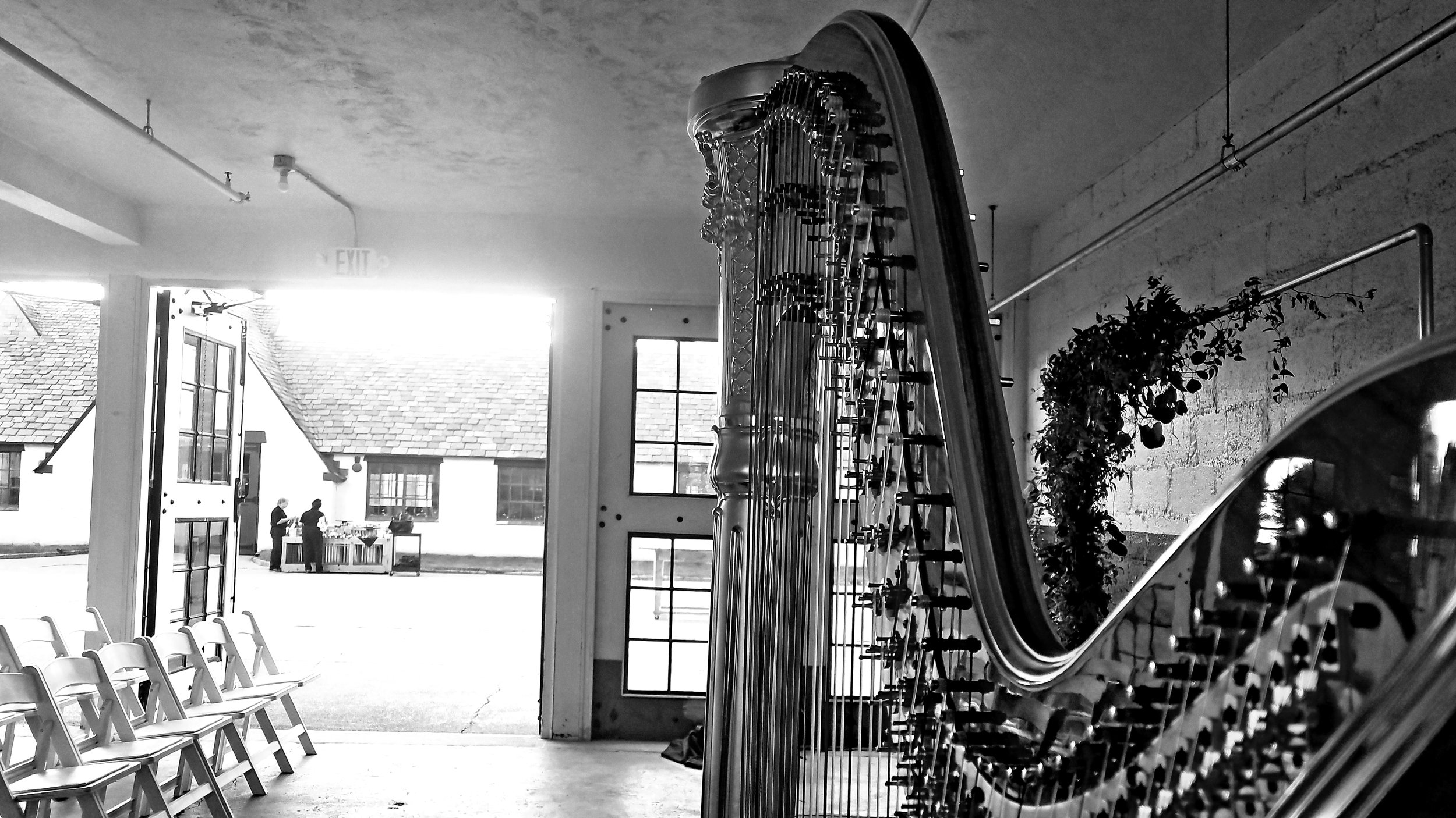 Michigan Harpist Weddings and Events