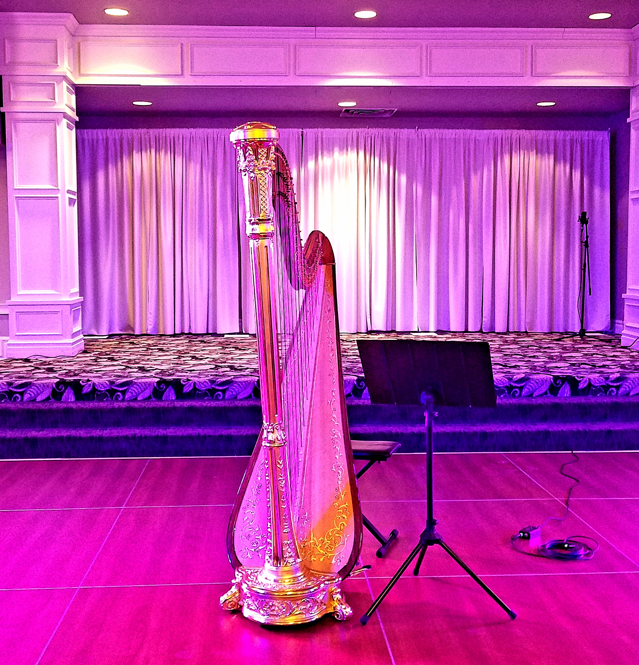The Michigan Harpist, Weddings and Events