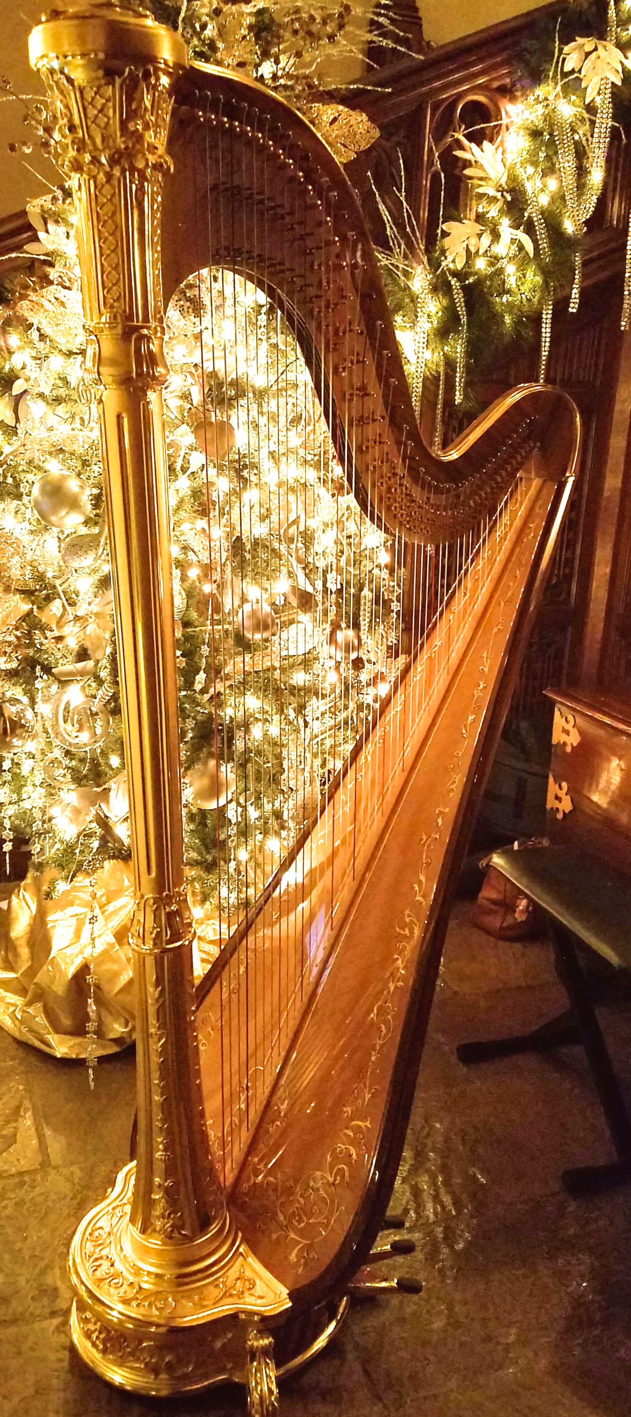 The Michigan Harpist Weddings and Events (16).jpg