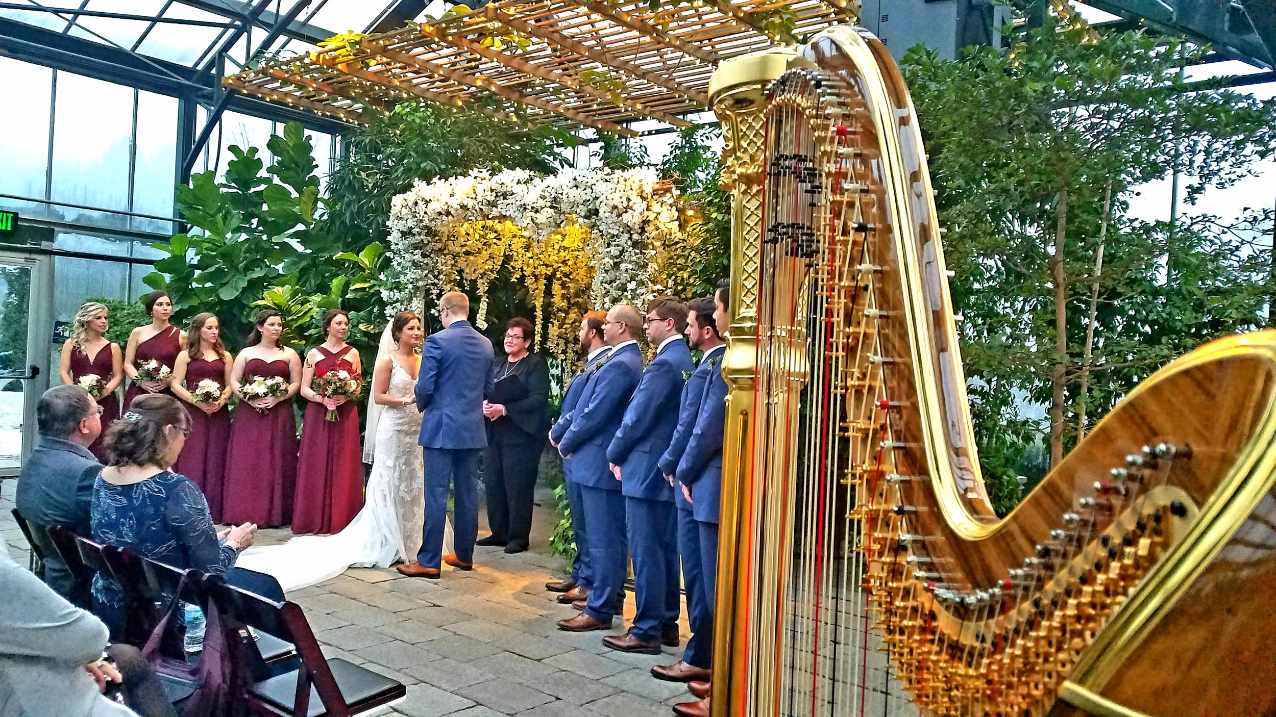 The Michigan Harpist Weddings and Events (22).jpg