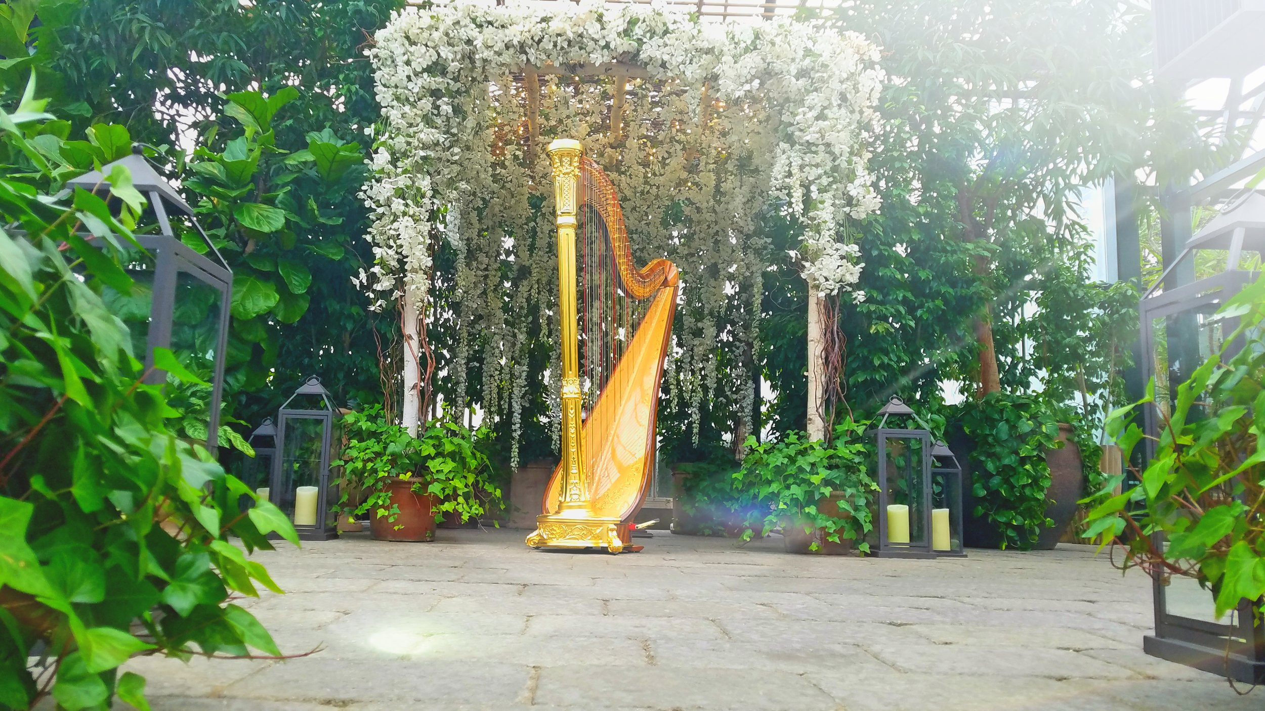 The Michigan Harpist Weddings and Events (24).jpg