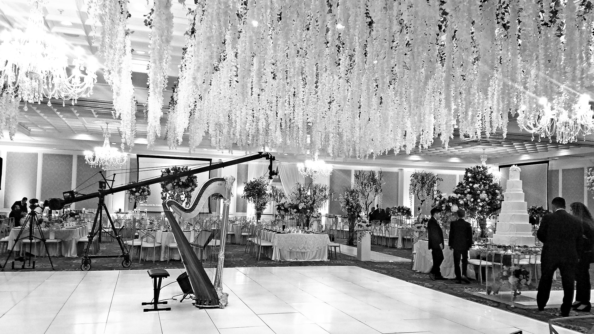 The Michigan Harpist Weddings and Events (35).jpg
