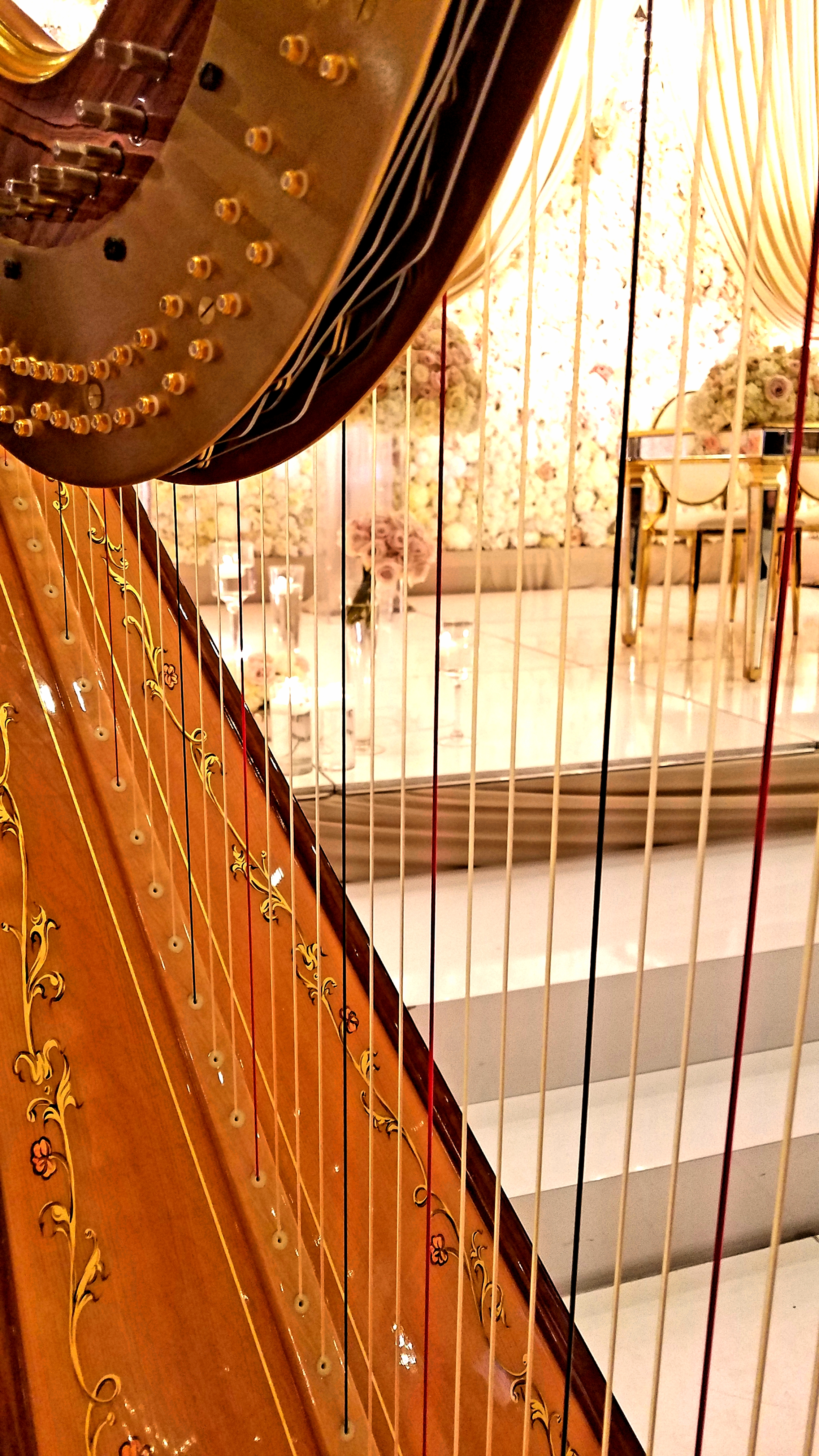 The Michigan Harpist Weddings and Events (40).jpg