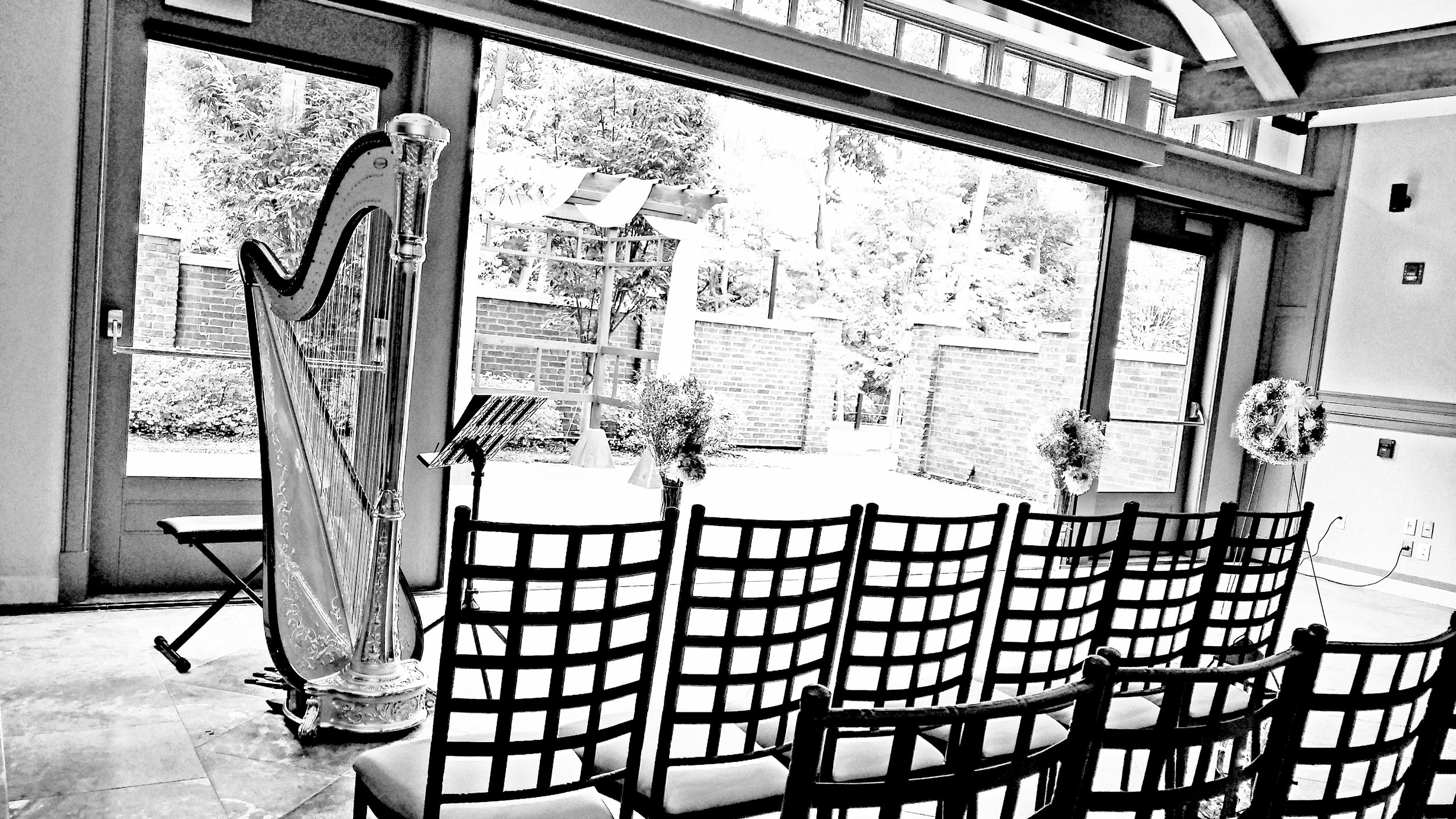 The Michigan Harpist Weddings and Events (42).jpg