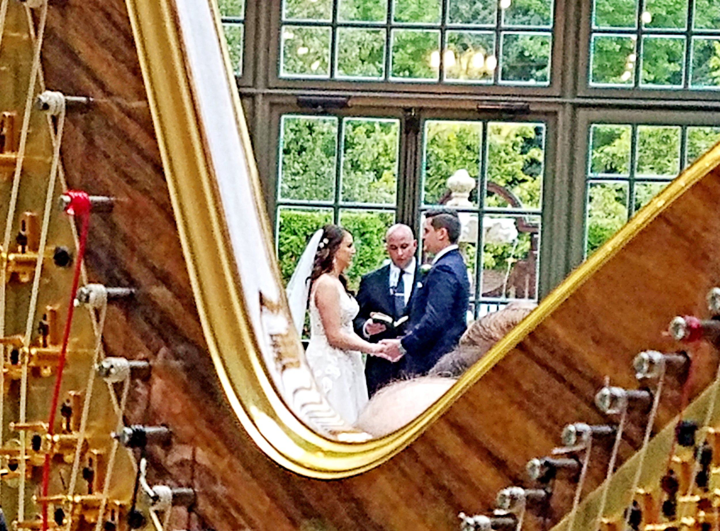 The Michigan Harpist Weddings and Events (44).jpg