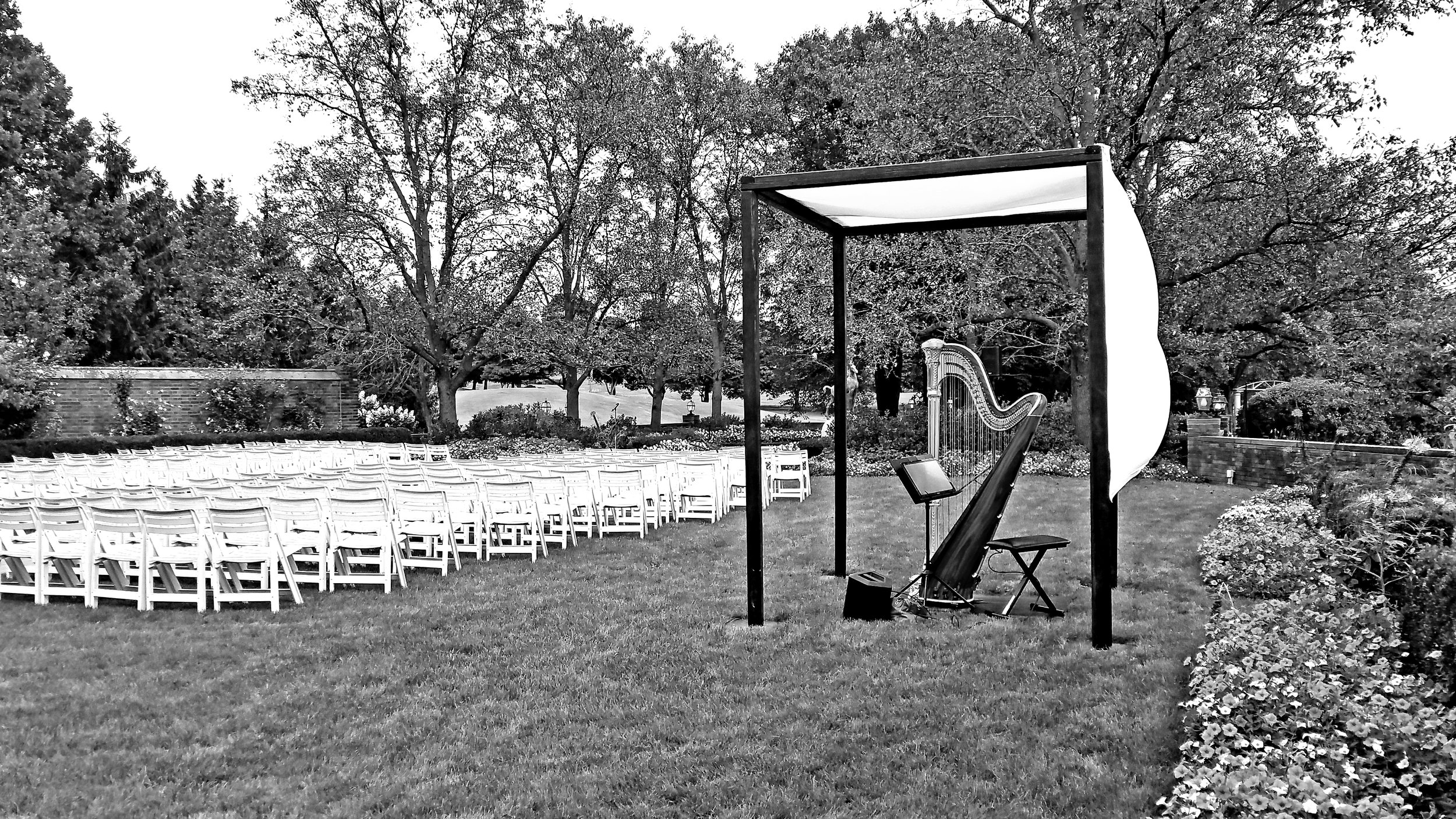 The Michigan Harpist Weddings and Events (47).jpg