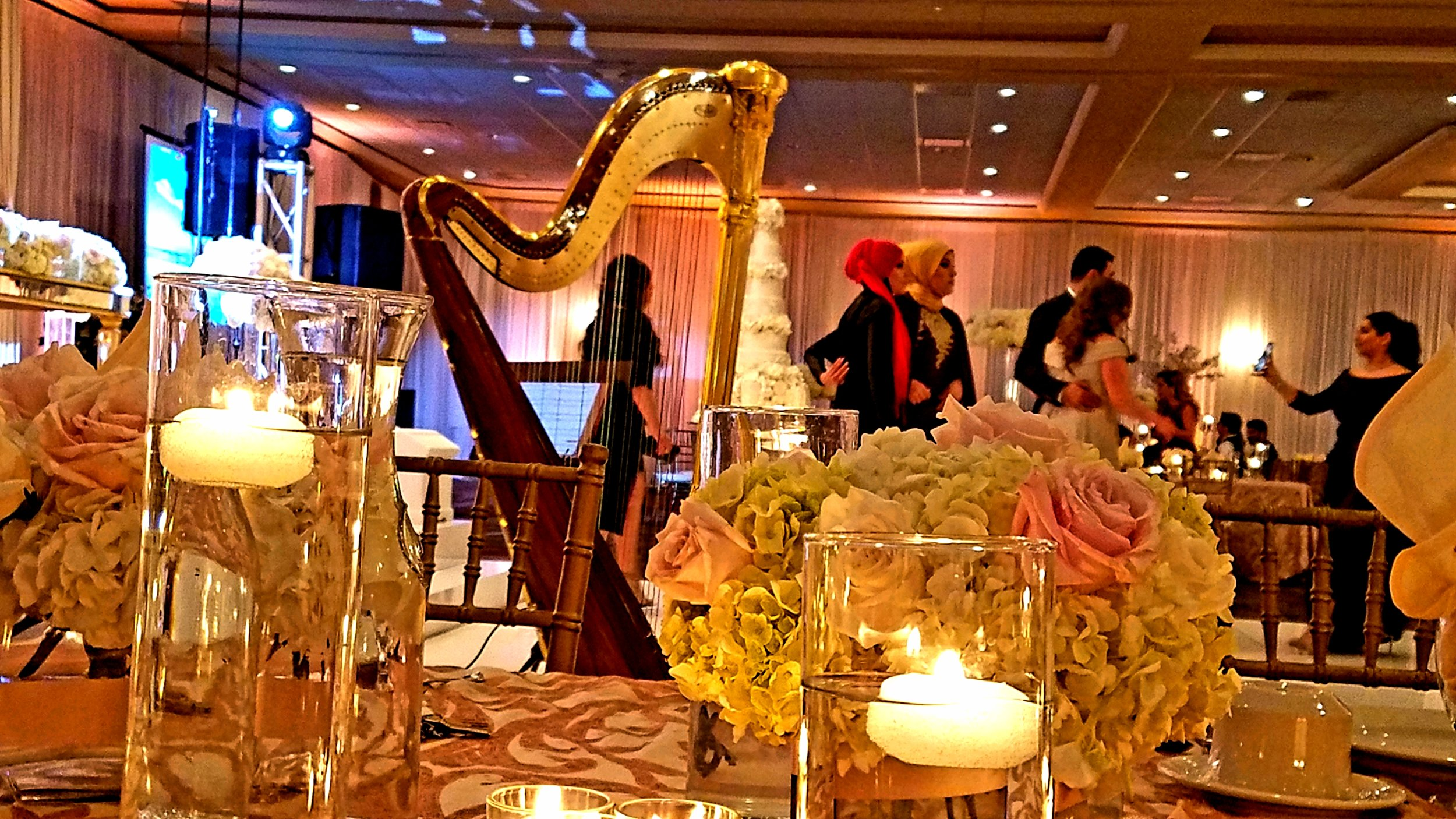The Michigan Harpist Weddings and Events (39).jpg