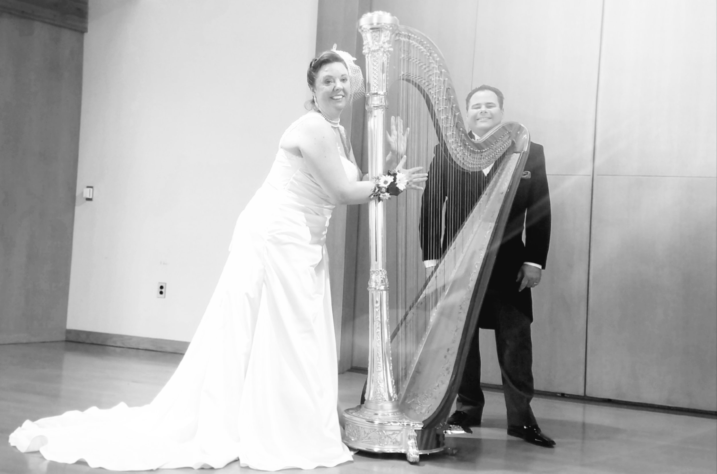 The Michigan Harpist Weddings & Events