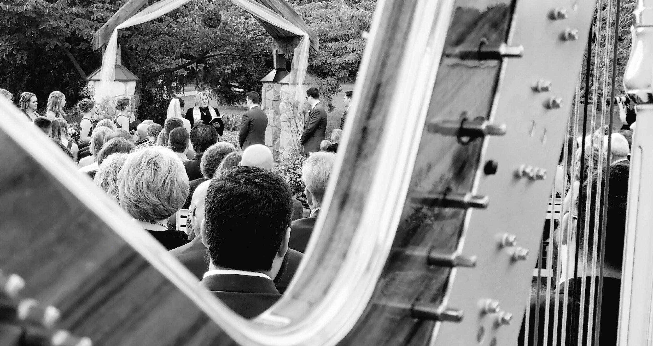 The Michigan Harpist Weddings & Events