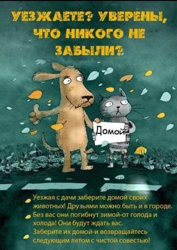 Источник: ok.ru