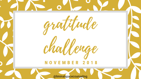 gratitude project for november.png