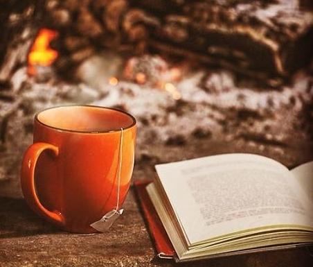 book & fireplace.jpg